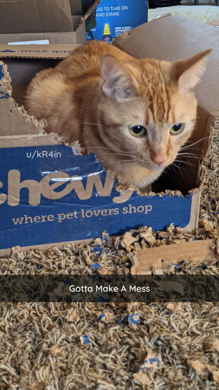 2. I mean, the box SAYS chewy....
