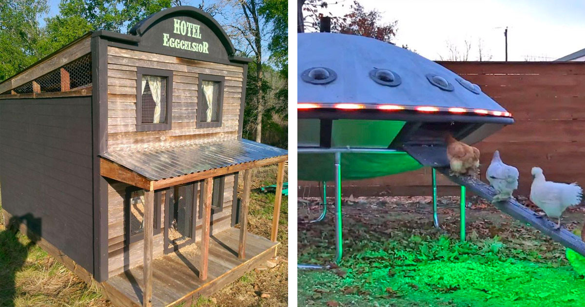 30 Photos Of Extremely Creative Chicken Coops