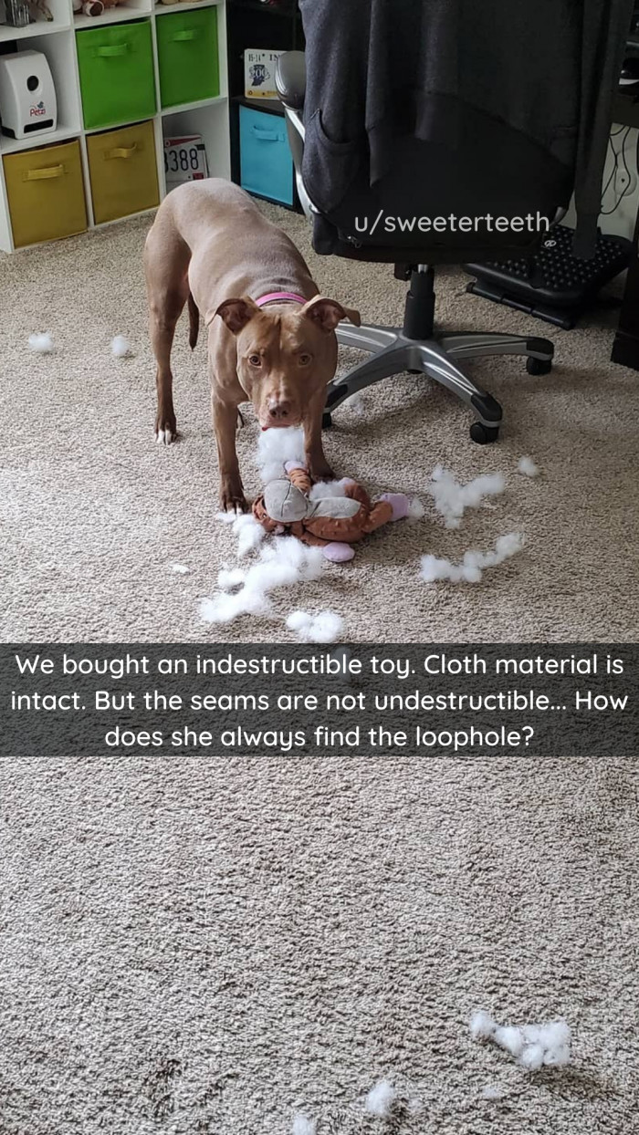 21. Indestructible is subjective.