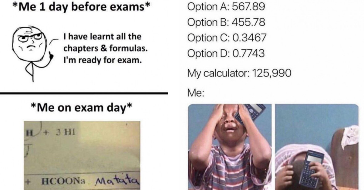 30 Hilarious Memes About School to Share With Your Friends