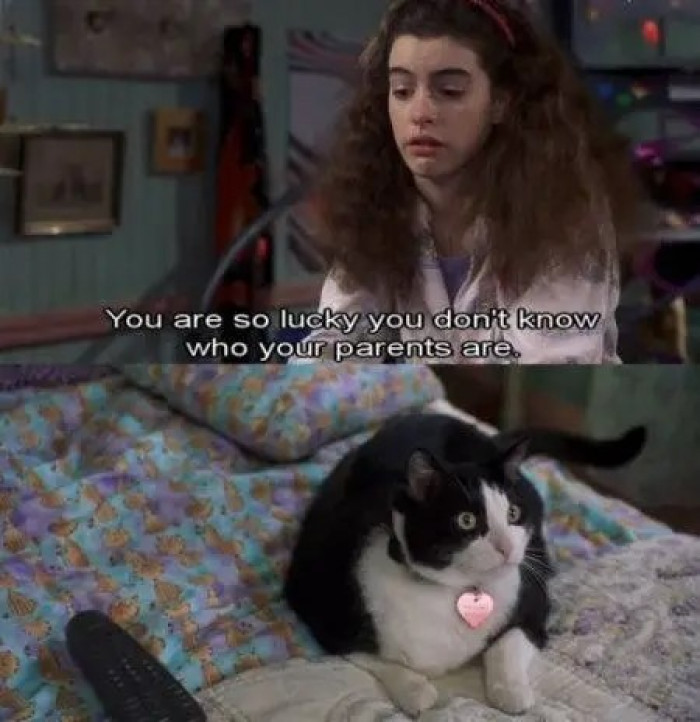 1. Fat Louie from The Princess Diaries