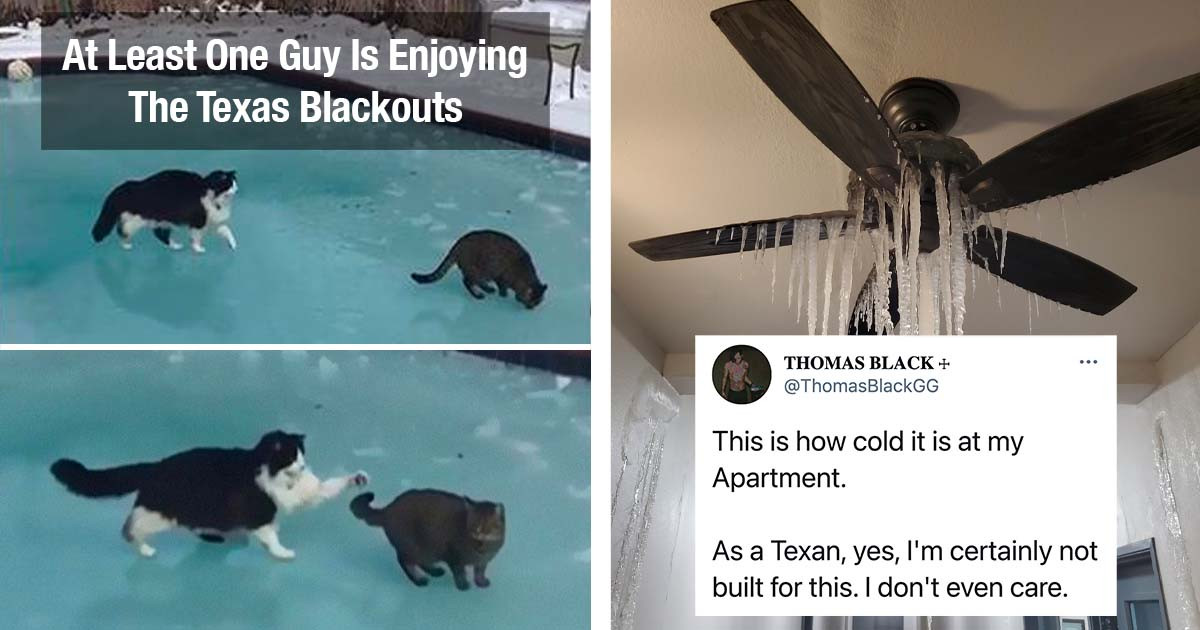Texas Is Currently Dealing With Its Coldest Weather In Over 30 Years, And People Aren't Coping With It That Well