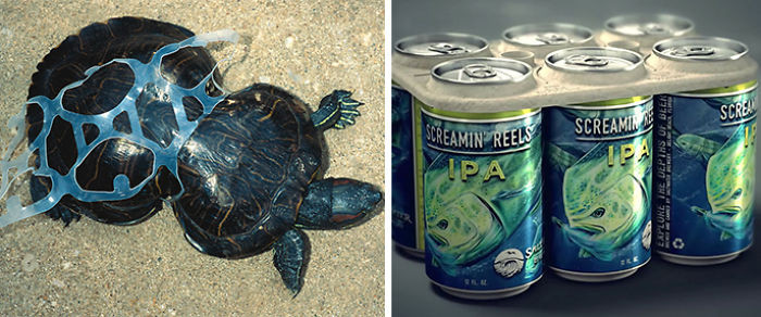 This brewery created edible six-pack rings in a sincere effort to reduce plastic waste.