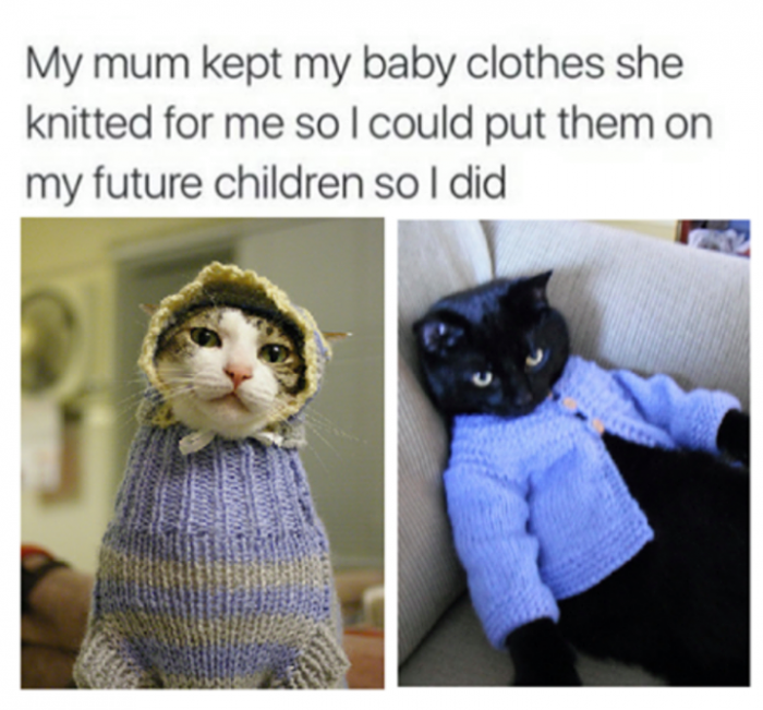 9. This is what a good cat-grandma looks like.