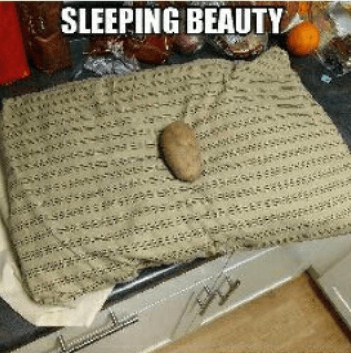 1. Sleeping Beauty