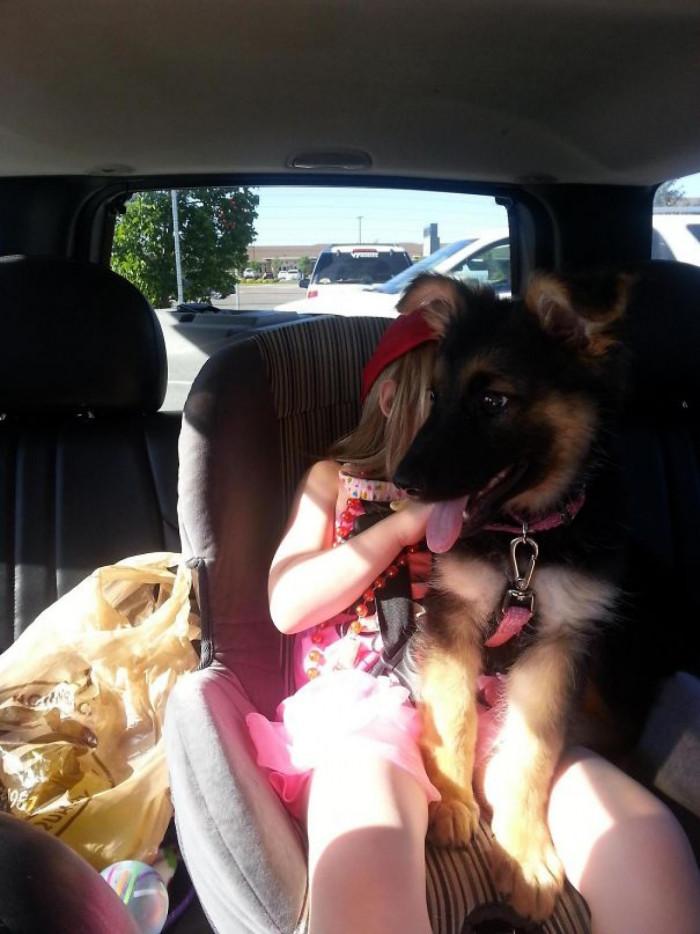 OMG puppy!