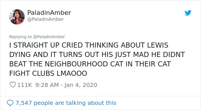 Why? Because another cat had beat him in a fight!