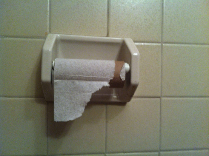 14. Mcaila posted: My brother thinks that by leaving half a sheet on the roll he won't have to change it.