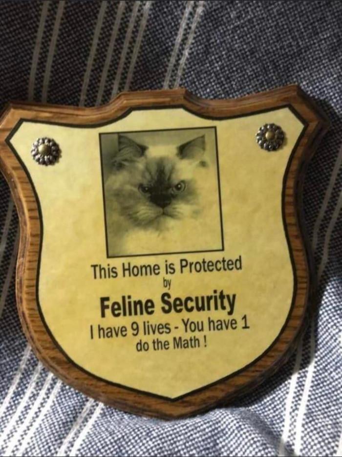 19. Security Guard