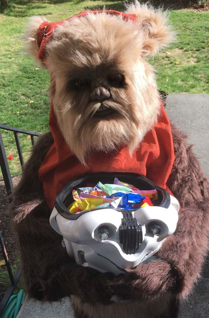 #37 I Made An Ewok Costume For My Daughter