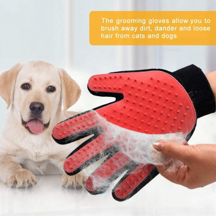 These gloves collect loose hair while you pat your pet