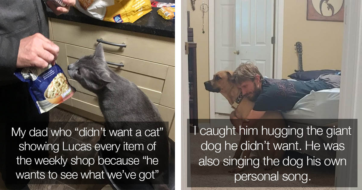 16 Men Who Didn't Want Pets But Now Can't Be Apart From Them