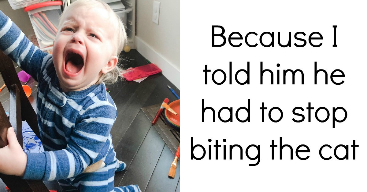 Pictures That Prove Kids Sometimes Cry For The Silliest Reasons
