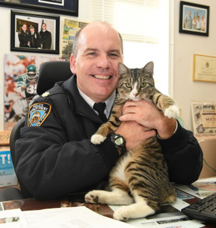 Everyone agreed, and the precinct's newest member is now fondly known as, Martin - named after Officer Martin D. Costanza, one of the officers who had pleaded to keep him.