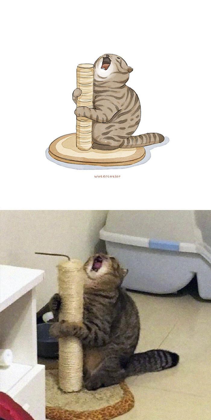 #1 Cat-e-oke