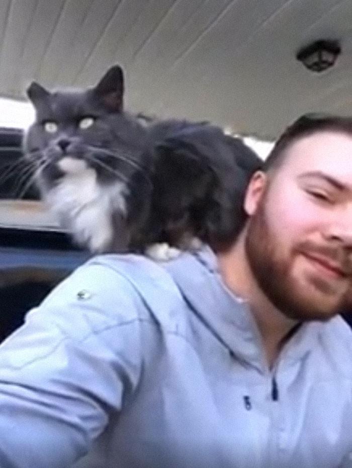 #18 My Carport, Not My Cat