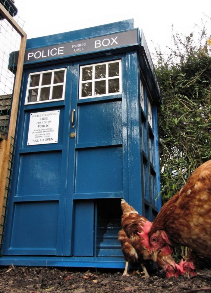 3. Police station to protect the hens.