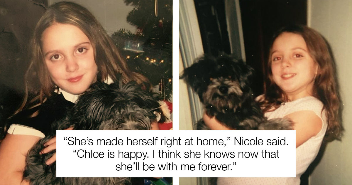 Woman Adopts Senior Dog from Shelter and Discovers It Is Her Childhood Puppy