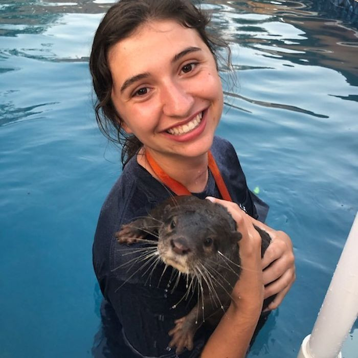 The number of otter swims offered at the Preserve is limited in order to ensure this remains a positive experience for the animals.
