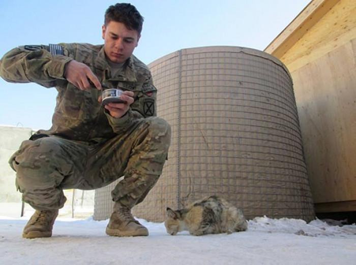 2. Feeding a cat while on duty