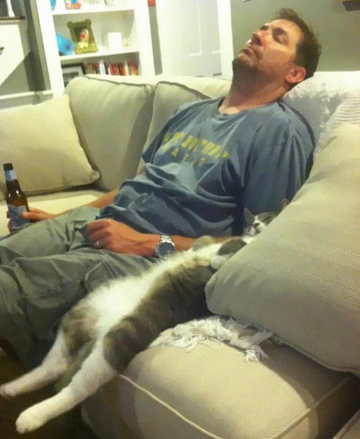 12. Just taking a cat nap.