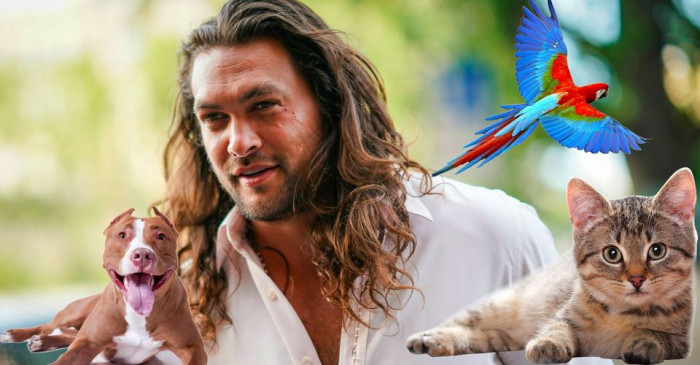 Momoa believes that both animals and children can be taught to love all races.