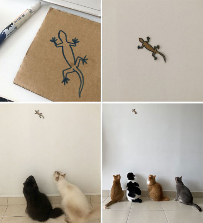 8. Smart cats