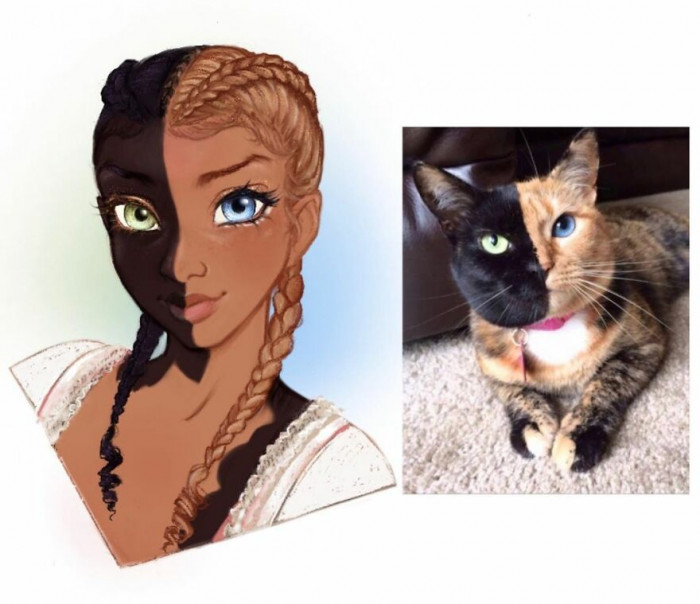 #10 Venus the Two-Faced Cat