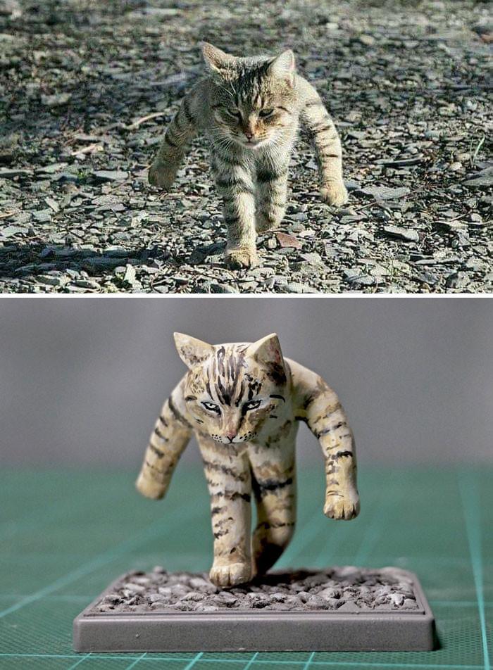 #4 War Kitty