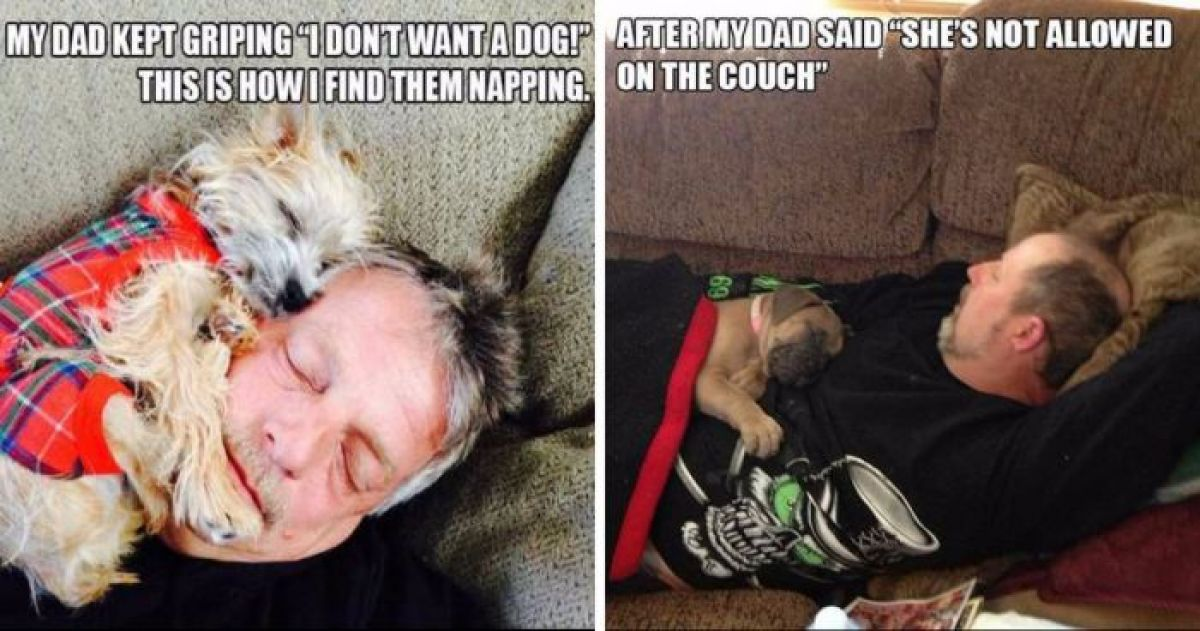 12 Dads Who Initially Hated Dogs But Ended Up Changing Their Minds