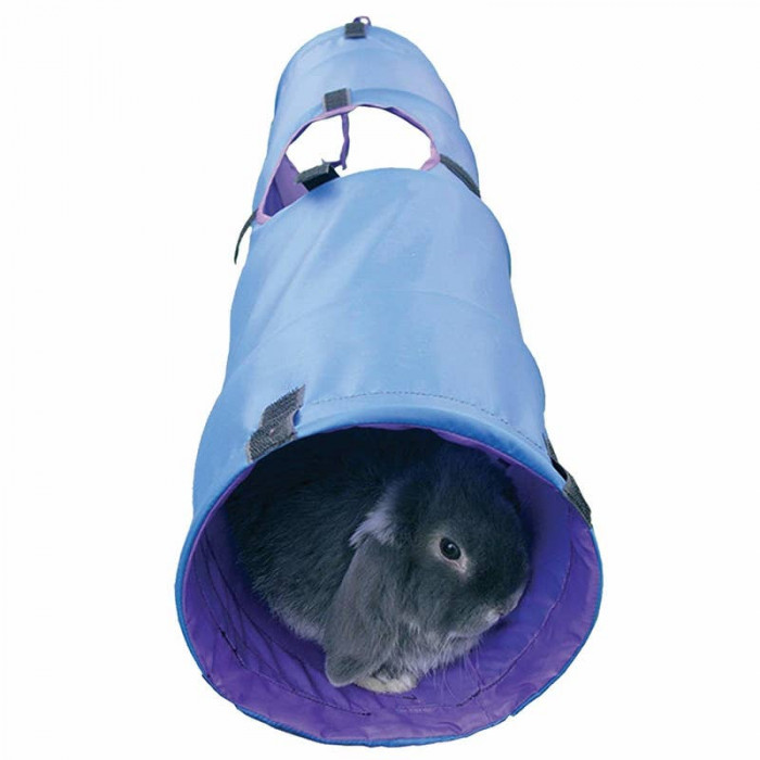 28. Activity Tunnel for Bunnies