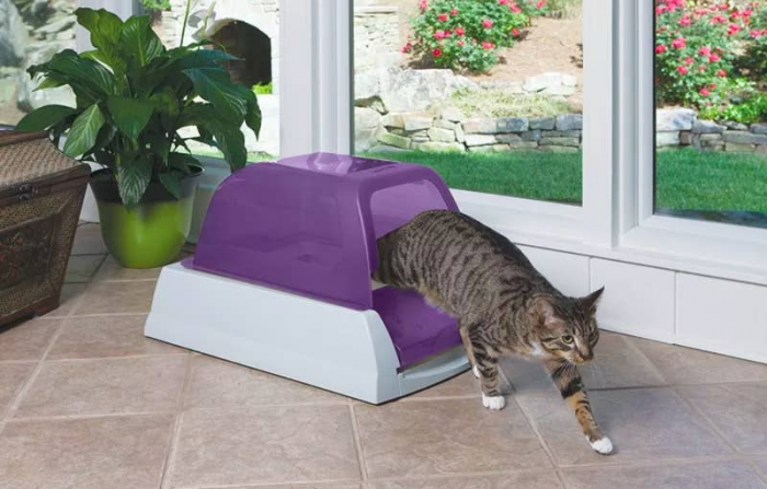 2. Self-Cleaning Litter Box