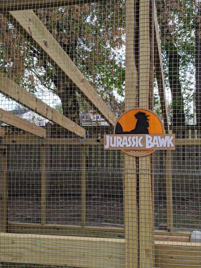 29. Jurassic Bawk