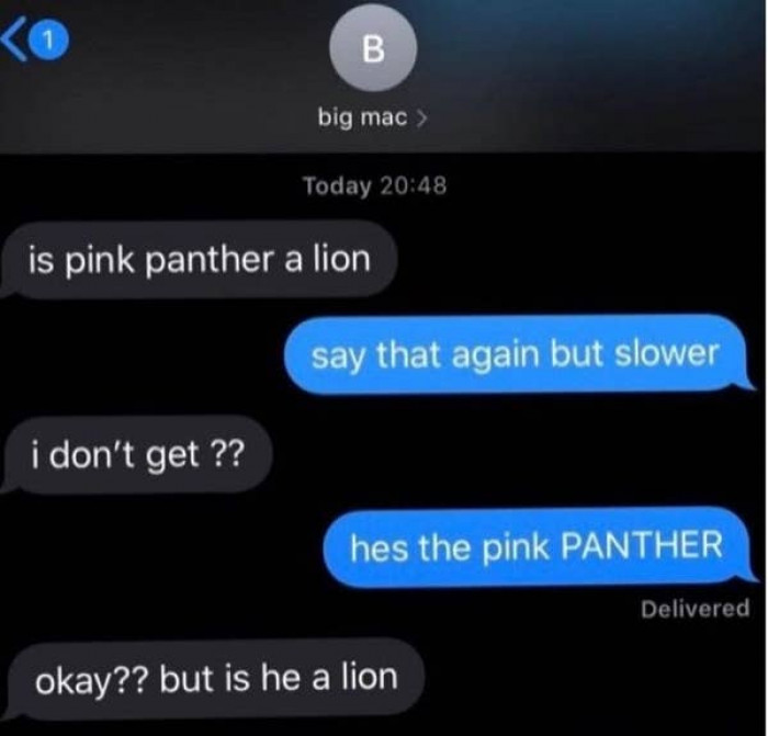 12. As someone who doesn't entirely understand the different between a panther and a lion I relate to this