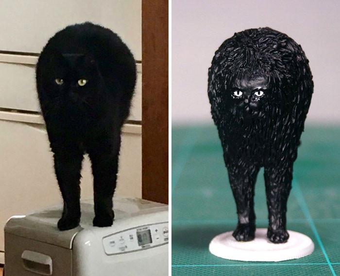 #27 Afro Cat