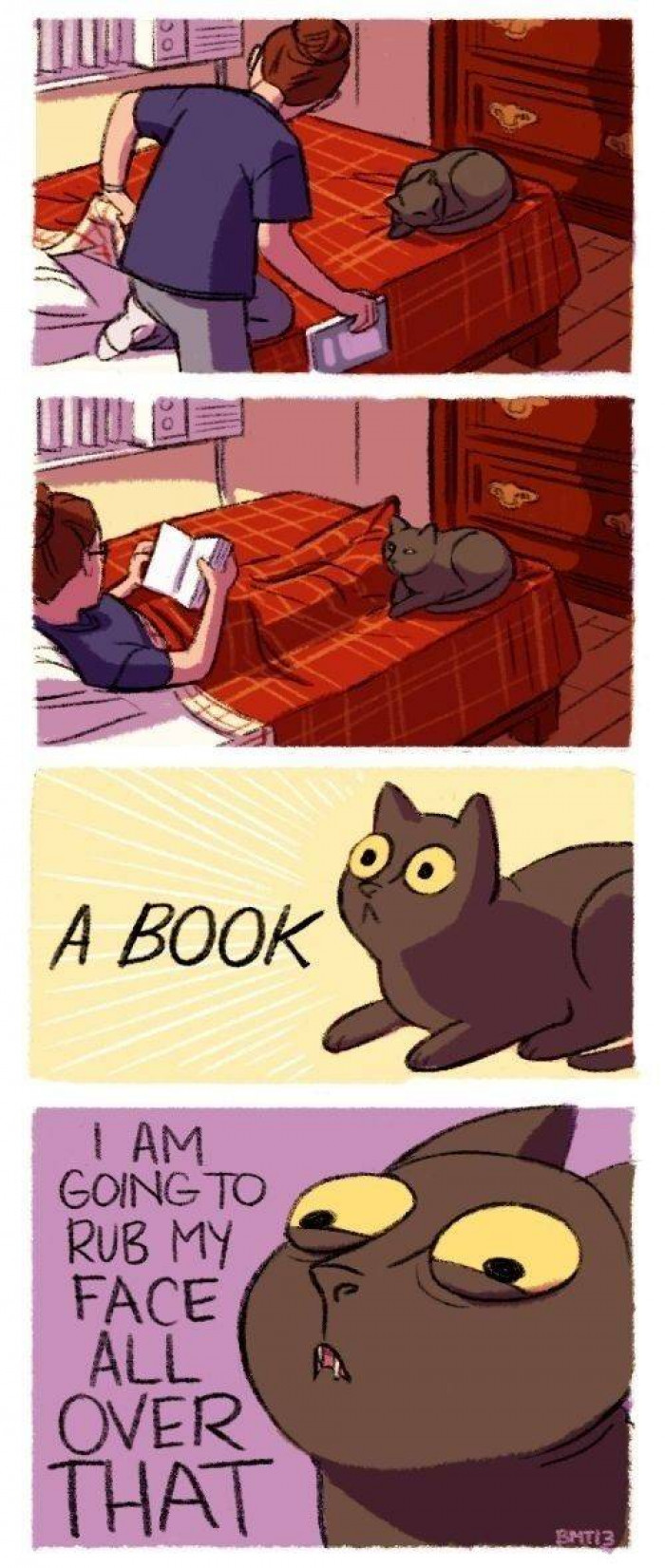 13. I will destroy that book