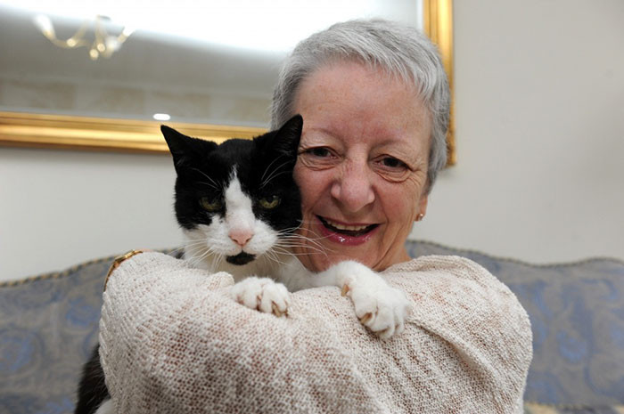 #5 Tom, A 24-Year-Old Cat Who Discovered His Owner's Cancer