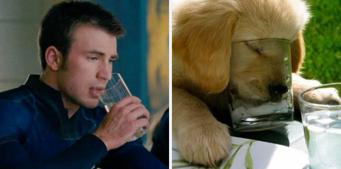 THAT. PUPPY. IS. DRINKING. FROM. A. GLASS!!!! I CANT!!!