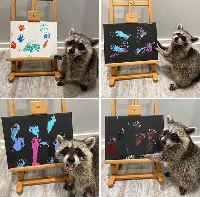 Trash Panda Art