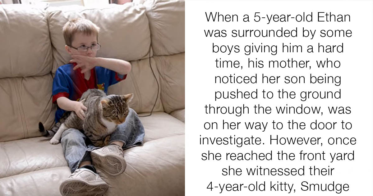 24 Times Cats Proved Their Bad Reputations Wrong By Being Heroes