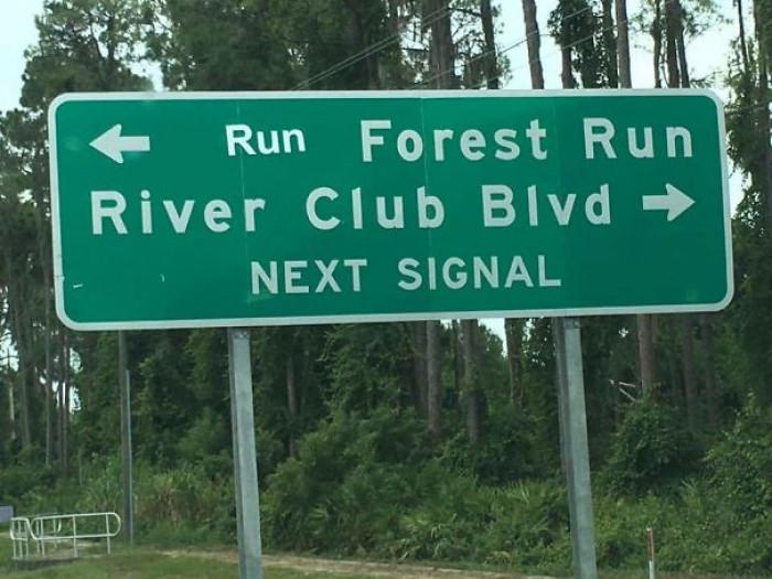#19 Run Forest Run