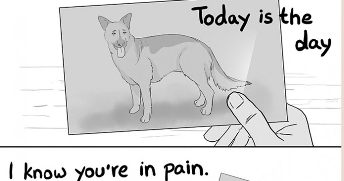 Heartbreaking Comic Shows How Important It Is To Be With Your Pet In Their Final Moments
