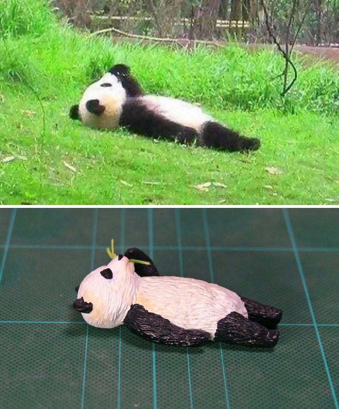 #21 Panda Kid
