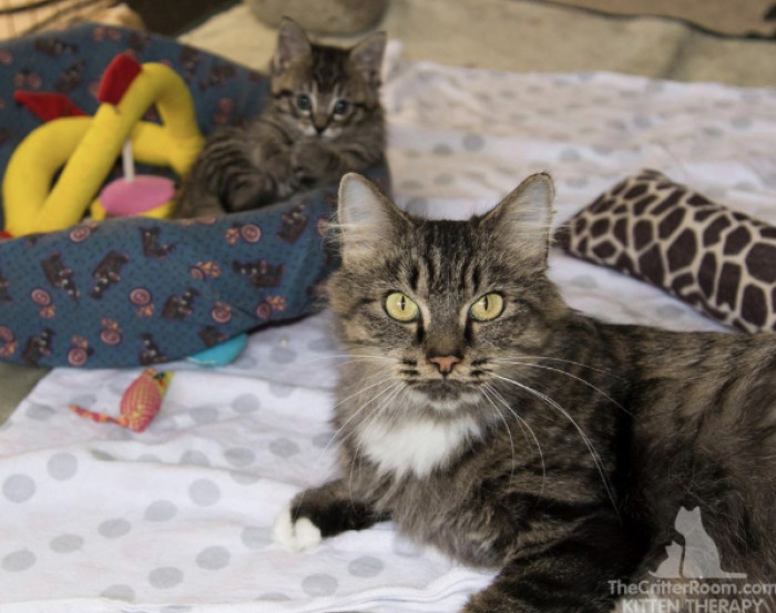 When it came time for adoption, everyone agreed that the duo needed to stay together.