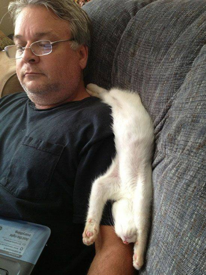 12. Th most comfortable napping position