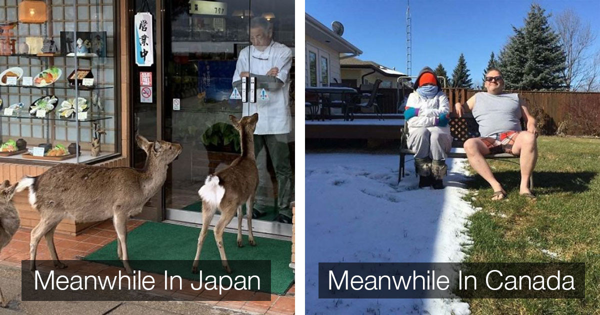 'Meanwhile In' Meme Hilariously and Brilliantly  Summarises Events from All Over the World