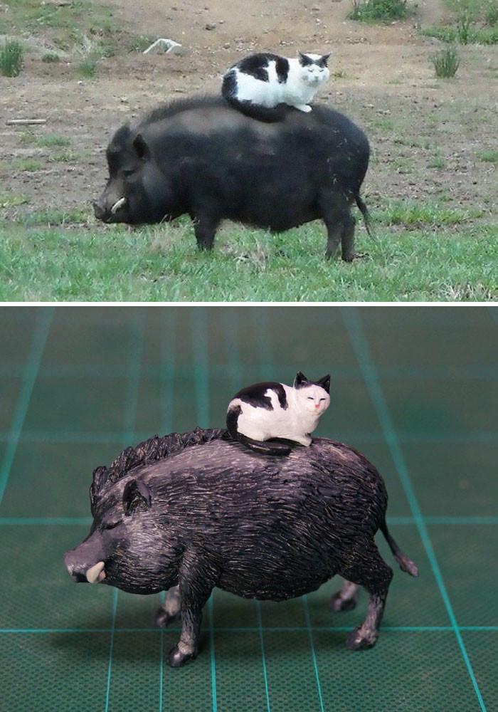 #22 Cat Hog