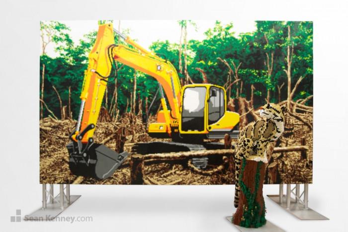 11. Deforestation