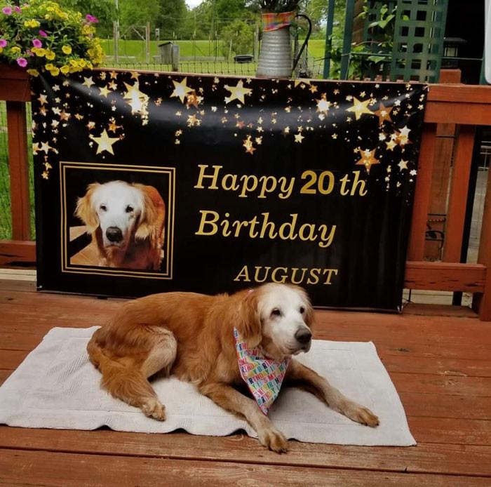 Auggie was born on April 24, 2000.