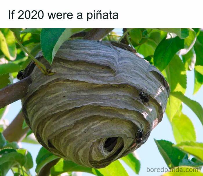 ... a piñata